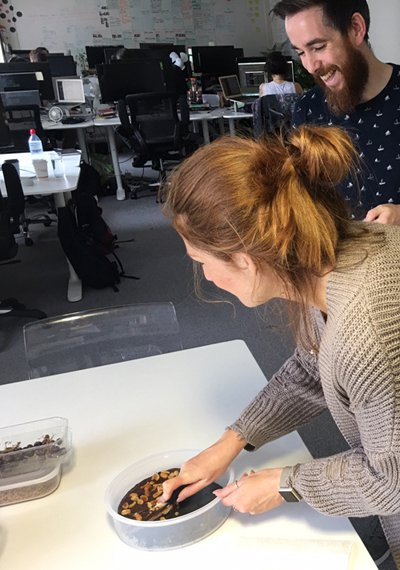 Team members sharing vegan cake